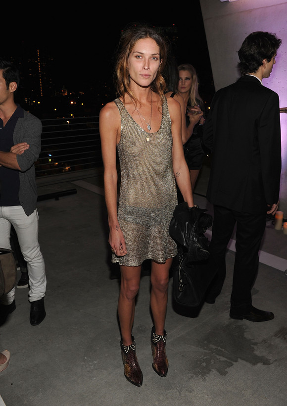 erin wasson jesse jo stark see through dress